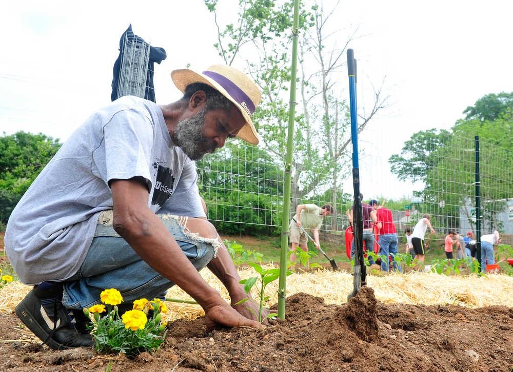 Jardinage blog conseils et astuces pour un beau jardin for Jardinage conseil