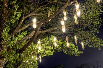 guirlande-arbre