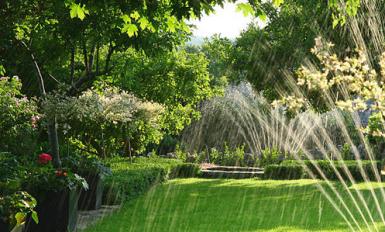 Jardinage blog conseils et astuces pour un beau jardin for Entretien plantes jardin