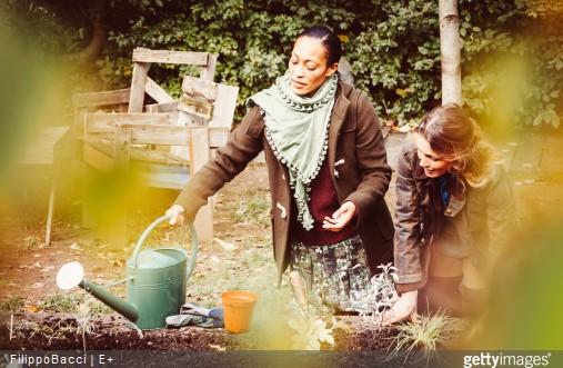 jardinage-hiver