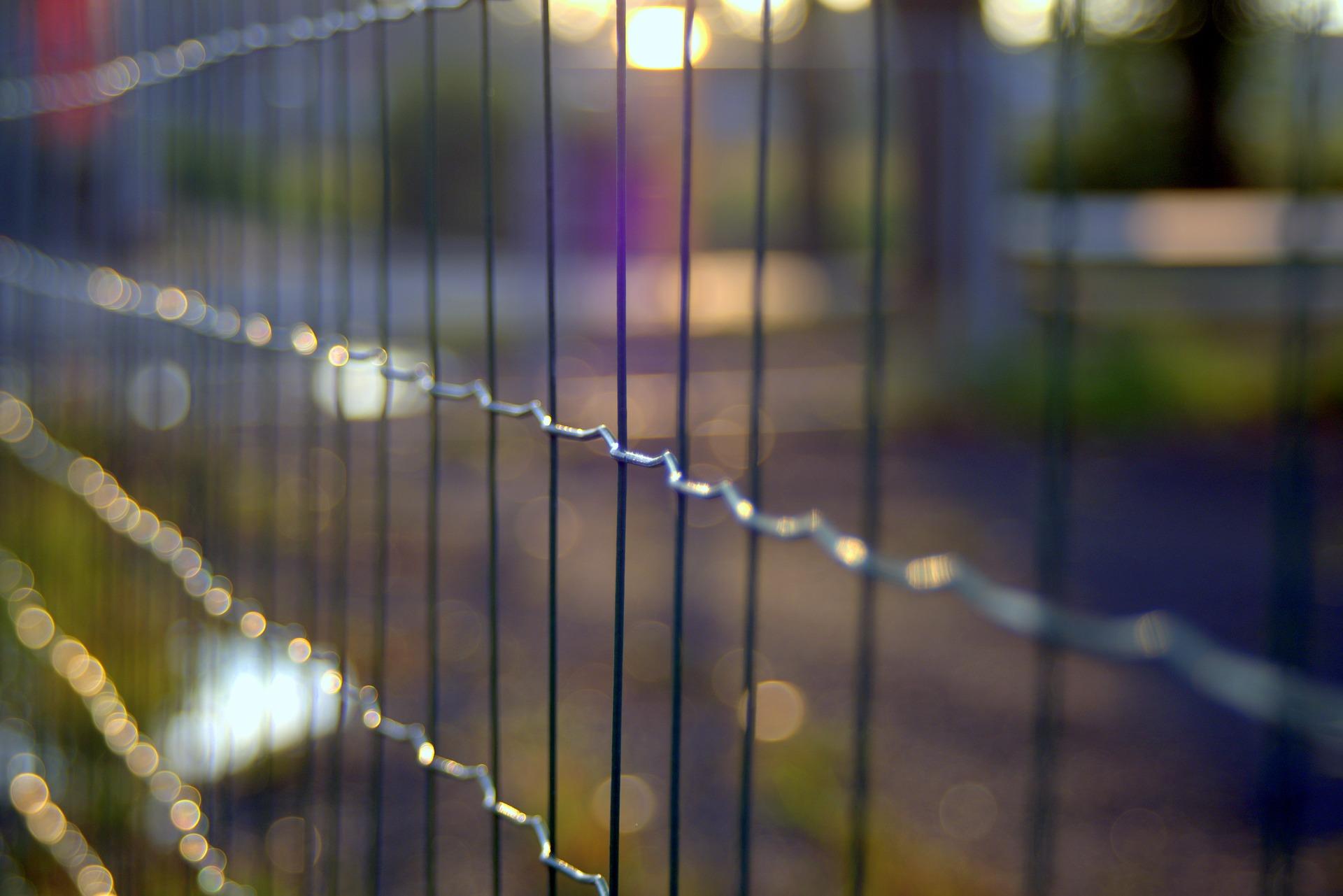 Se Cacher Des Voisins Dans Son Jardin 3 manières de protéger son jardin du regard des voisins
