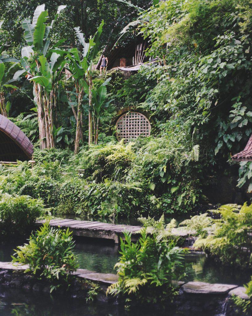 Une piscine naturelle tropicale