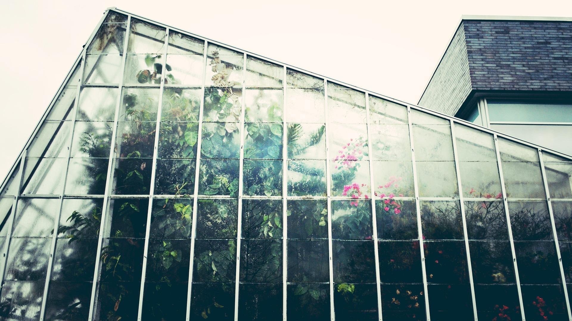 Une véranda pour plantes